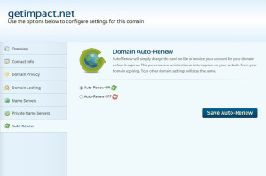 Domain auto-renew setting is shown in a GUI