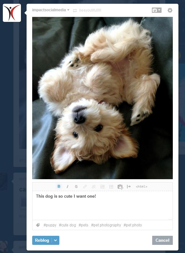 Reblog Cool Stuff At Tumblr