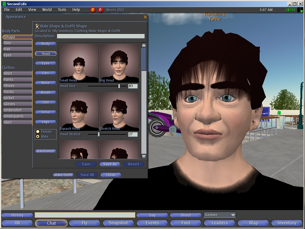 Second Life Avatar Options