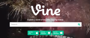 What Is Vine Vine Review
